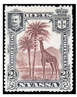 nyassa-giraffe-1901