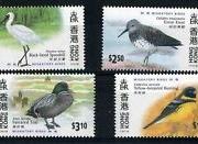 mTEVPOtmzzJWIvJh0D_c9ywHK-Birds