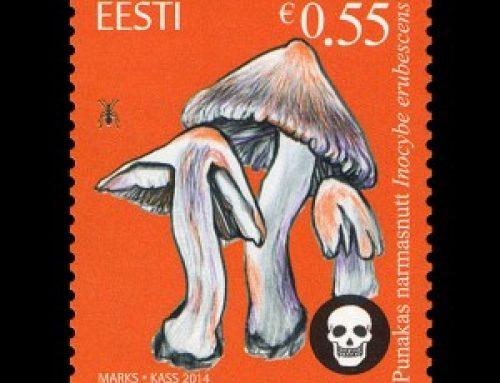 Stamps of Estonia: Deadly Firecap Mushrooms (2014)