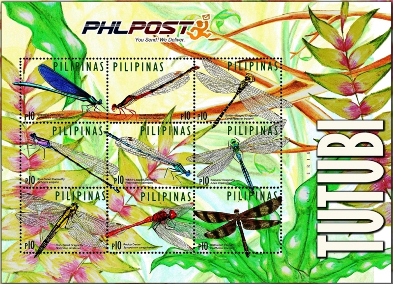 Philippines Dragonfly 2015