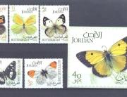 Jordan Butterflies 2007