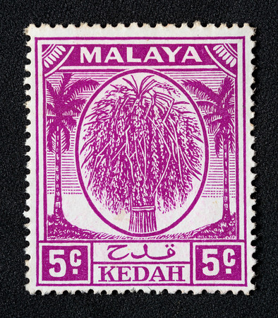 fig-34-malaya