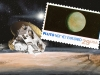 plutoUS space 2015