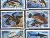 Cape Verde Fish 1980