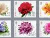 ersey flower-l
