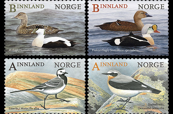 norway birds